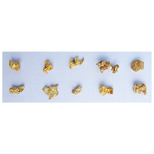 1.60g of small gold nuggets from the  Honey Camp Goldfield Issano Mazaruni District, Guyana