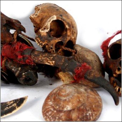 Dayak ritual garland with tusks shells and monkey skulls